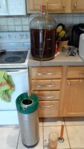 Siphoning beer from carboy into keg.
