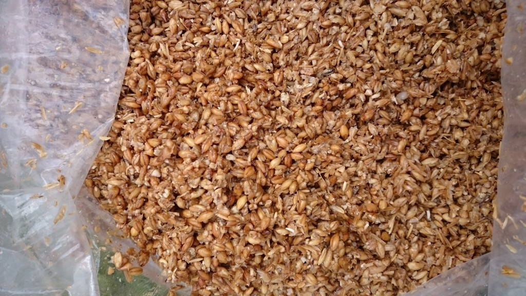 Grains not crushed post boil