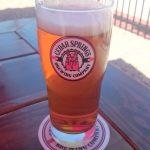Cedar Springs Oktoberfest Beer